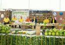 """ททท. ชวนเที่ยวงาน เกษตรแฟร์แม่กลอง ครั้งที่ 2 ประจำปี 62 ตอน """"มะพร้าวเมือง 3 น้ำ"""""""