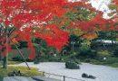 เริ่มแล้วฤดูใบไม้เปลี่ยนสีที่โทโฮคุตอนใต้ นั่งรถไฟไปชมได้ง่าย ๆ